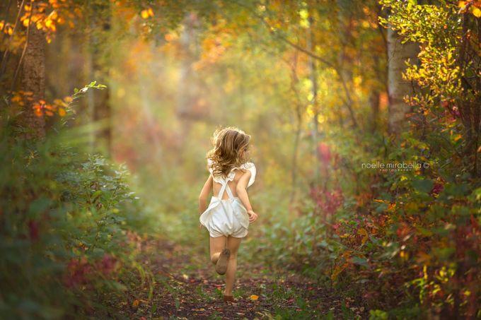 Autumn Splendour  by NoelleMirabella - My Best Shot Photo Contest Vol 3