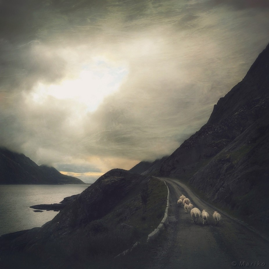 Heading Home by Mariko - Country Roads Photo Contest
