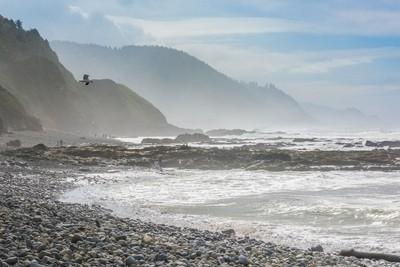Rocky, misty and foggy Oregon coast