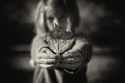 Last Days of Summer #11 - Leaf