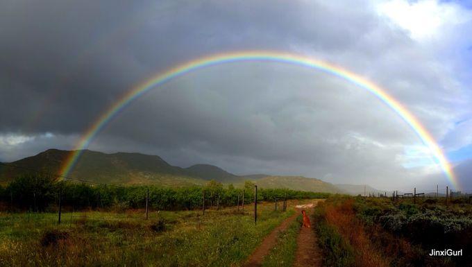 Rainbow sky by JinxiGurl - Rainbows Overhead Photo Contest