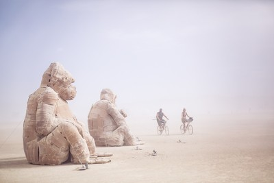 Meet Gorillas in the Desert