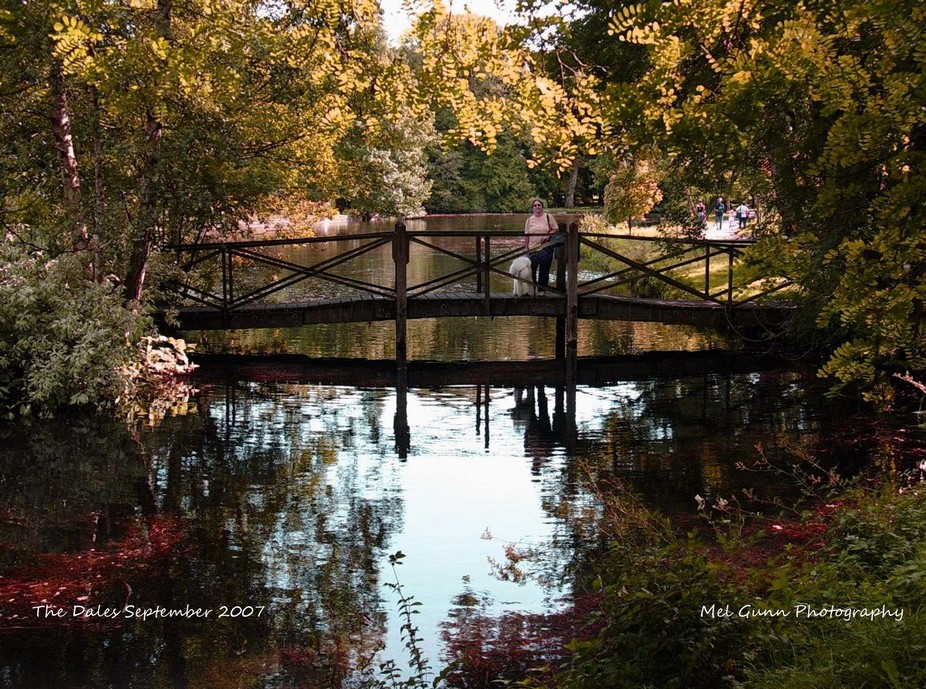 My wife walking our pet poodle over this bridge which I thought had a hint of a Monet painting ab...