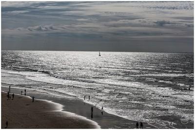 Dazzling_Sea
