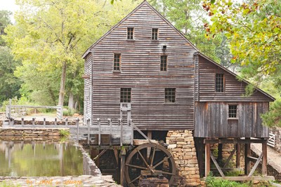 Yates Mill Pond IMG_2801