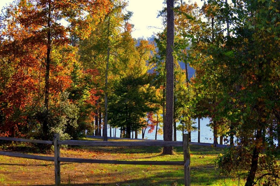 Leaves changing color around Guntersville Lake