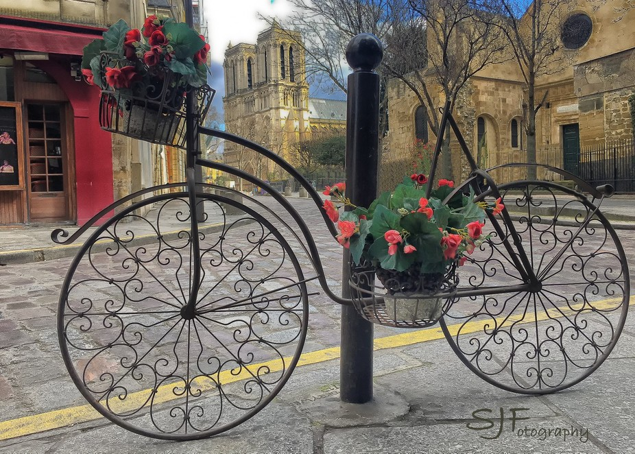 Notre Dame bicycle