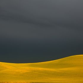 A storm approaches on the Palouse.  Colfax, Washington.