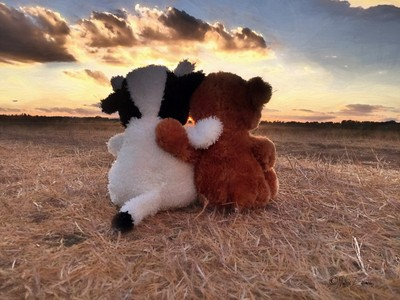 Nothin Like Best Friends Watchin a Gorgeous Sunset Together...
