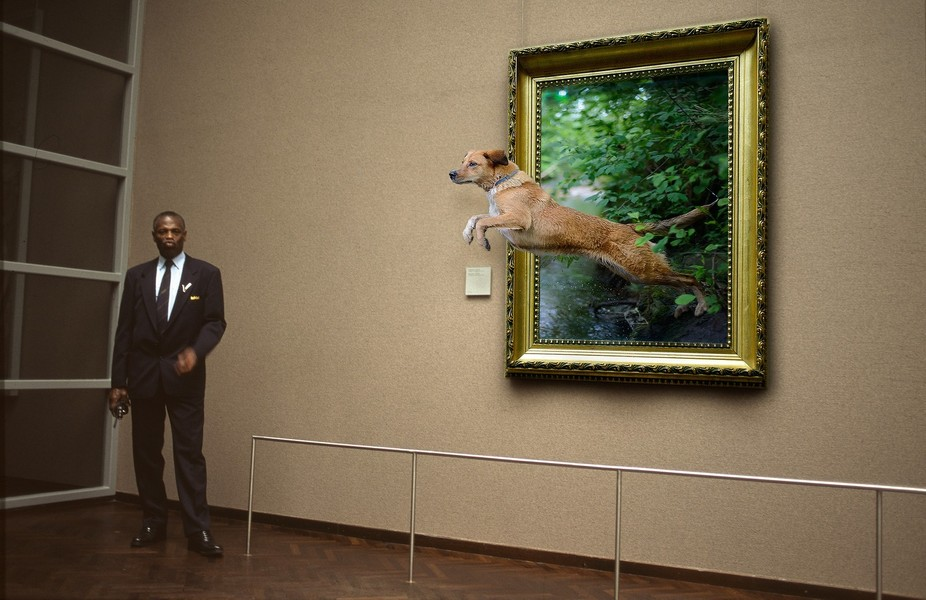 Dog jumps at the museum from a painting