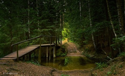 fairytale bridge...