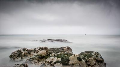 1324-Coast