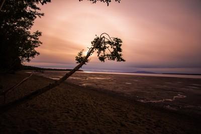 Alaska Foggy Sunset