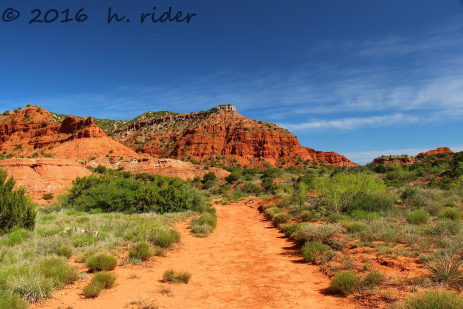 Taken at Caprock Canyon State Park in Texas.