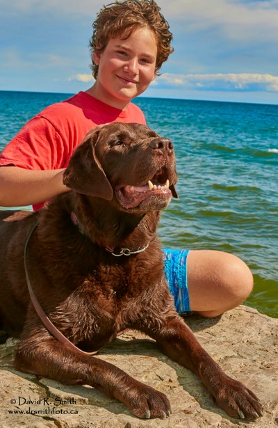 Bruce the Moose Chocolate Lab and Robson at Lake Ontario - Photo by David R. Smith