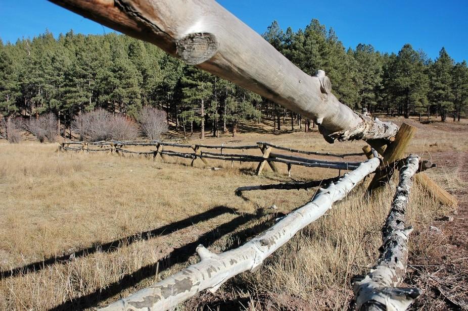 Wooden Fence Jemez Mtn. N.M.
