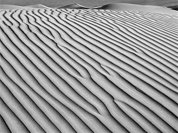 Sand Dune #3 by gosmundson - Composing with Patterns Photo Contest