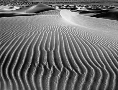 Sand Dune #5
