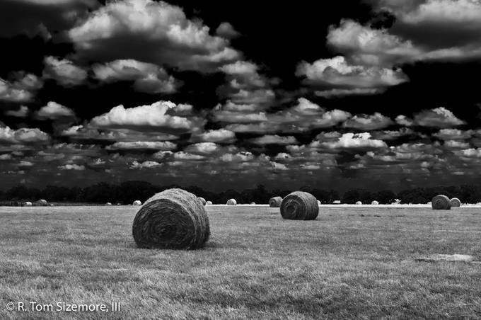 This field was just off Route 290 in Gillespie County, Texas in June 2009.  It was a very hot day and the sky seemed to go on forever over a field full of bales of hay.  It was very stunning!  I used a Nikon D300 and converted it to B&W with Silver Efex Pro 2 with ND filter and Red filter to darken the sky.