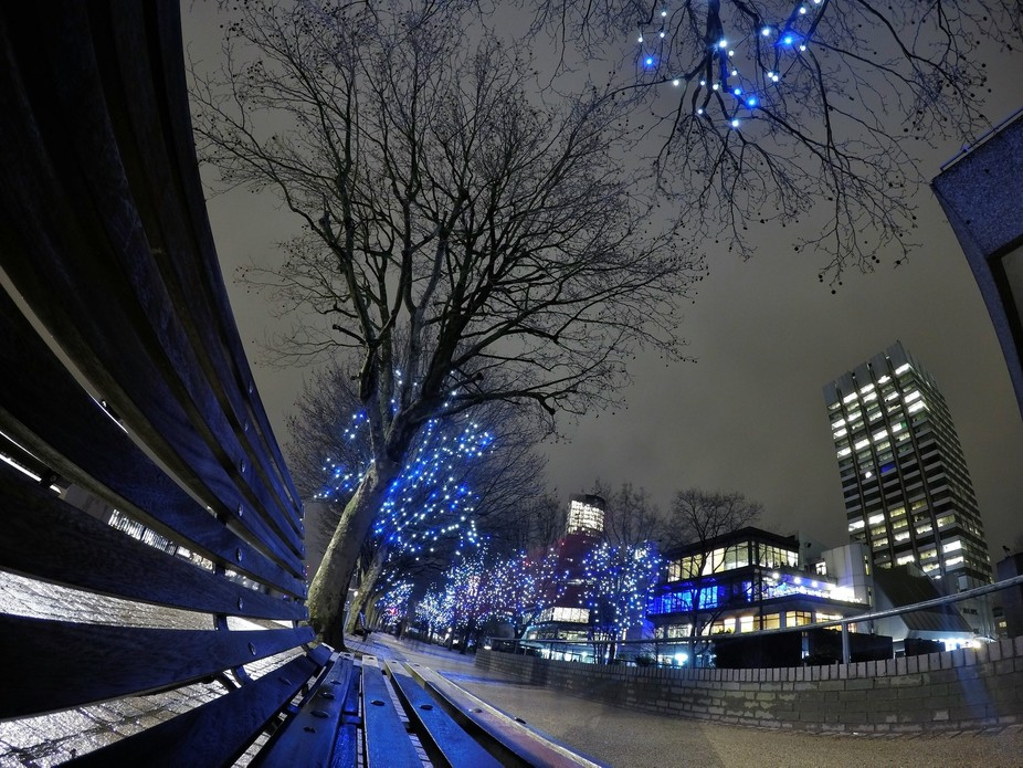 Quiet walk along the River Thames
