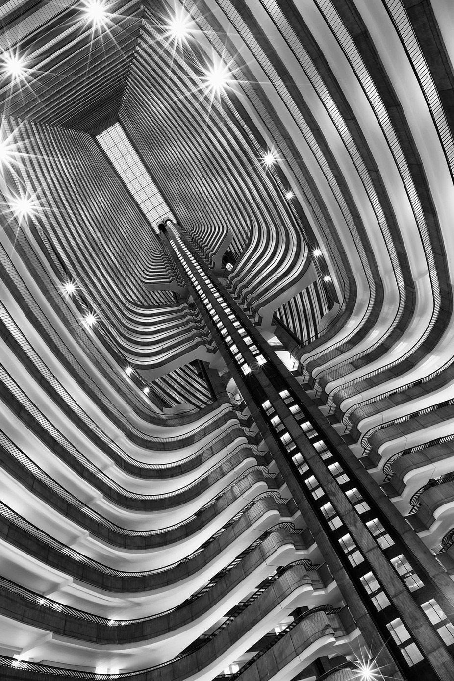 Ribcage by ashleysowter - High Ceilings Photo Contest