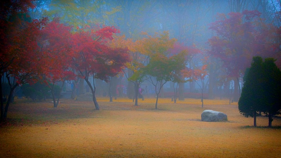 The mist had not yet lifted when I took this shot, an hour before the hordes of tourists from the...