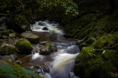 Nature's Waterway
