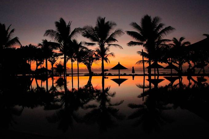 _MG_5266 by rupeshtripathi - Silhouettes Of Trees Photo Contest