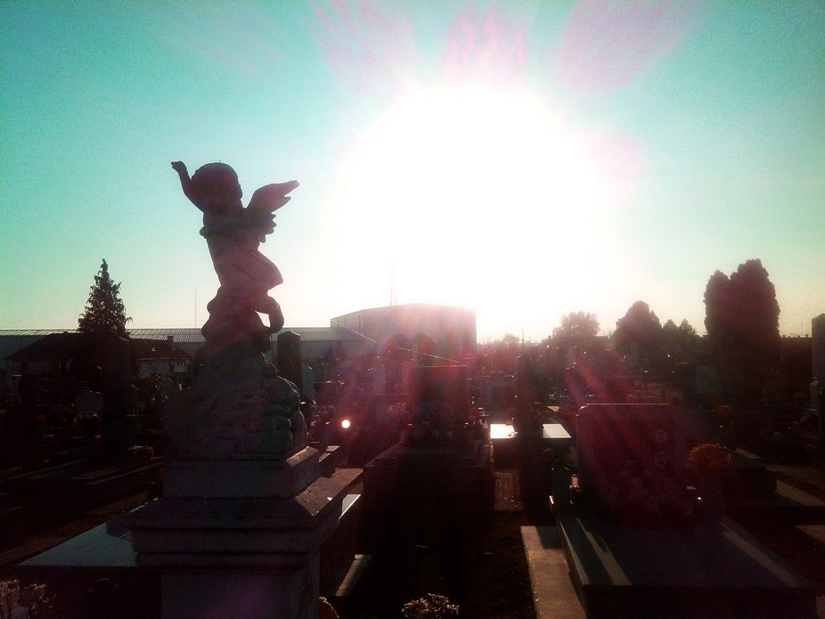 Bajsko cemetery is the biggest cemetery in Subotica, my hometown. It's famous catholic-p...