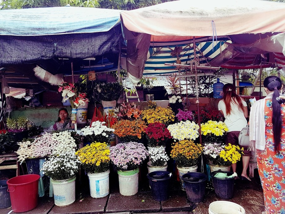 I shot that photo at the flower shop near bahan market, yangon, myanmar. I tried to shoot only th...