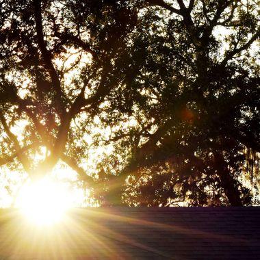 Sun flare over house