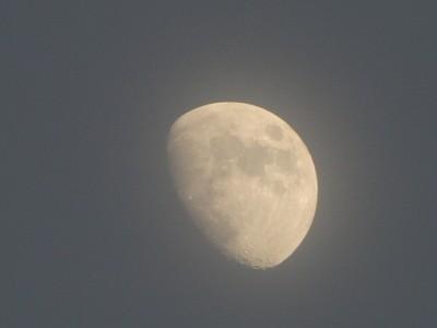1 Dec 2014-Moon