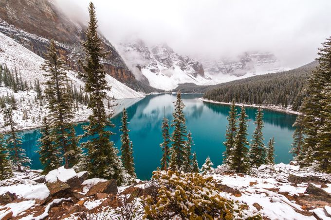 Beauty snowcapped by CuriousM - Canada Photo Contest