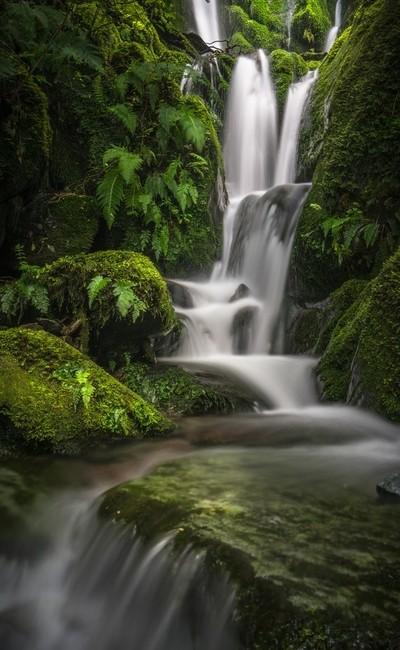 Green Cascade
