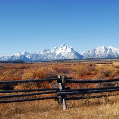 Teton's and fence
