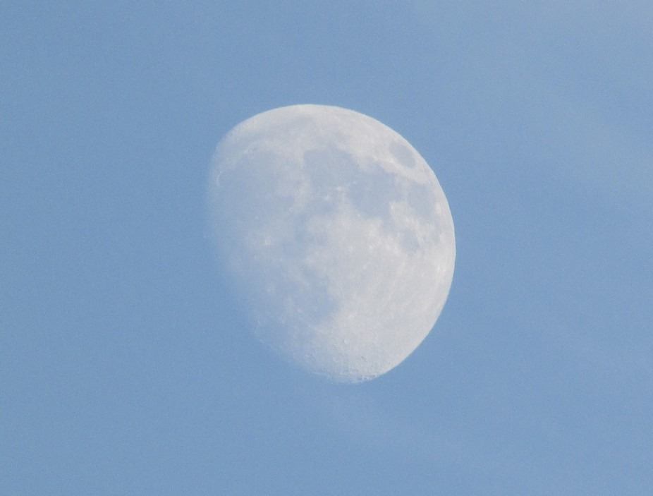 I love to see the moon, it's never the same! Before some days I had this view of the moo...