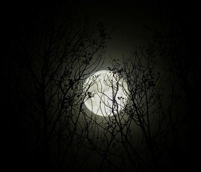 Full Moon - October 16th,2016