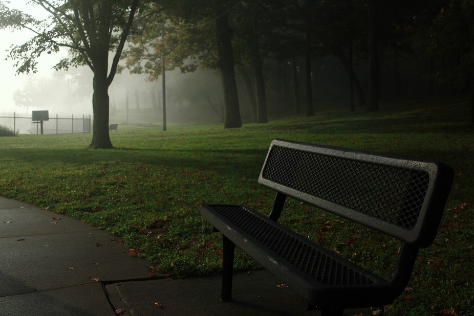 It was a foggy morning on the Mississippi. Eagle Point Park is a beautiful old park that sits on ...
