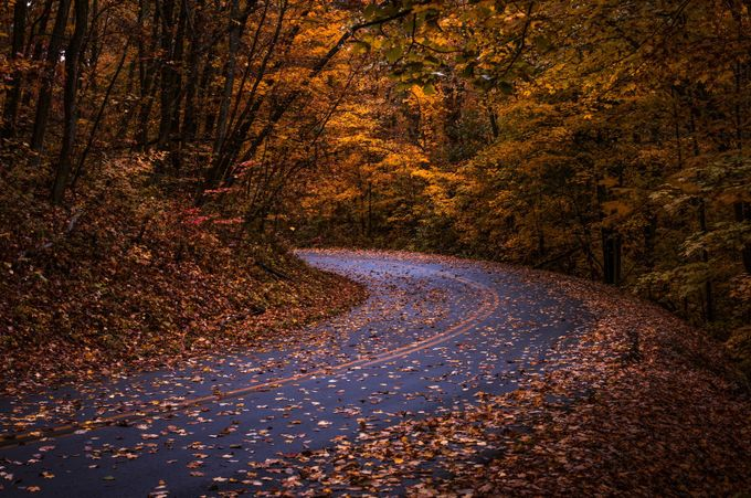 scenic drive by Amanda_Wakefield - Curves And Compositions Photo Contest