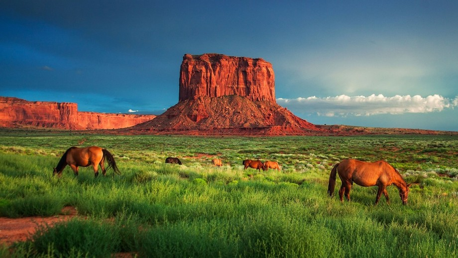This photo is of a beautiful evening outside of Monument Valley, Utah. I have such fond memories ...