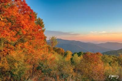 Fall Color at Thorofare Mountain; Shenandoah National Park