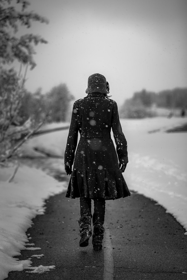 Long, cold walk... by Gambar - Capture The Back Photo Contest