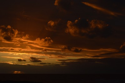Sunset Beauty 1