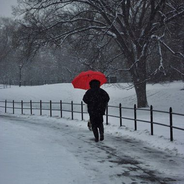 While entering Central Park at 81st Street, I caught this woman entering the park on a very snowy day walking her dog. I was using my first digital camera.