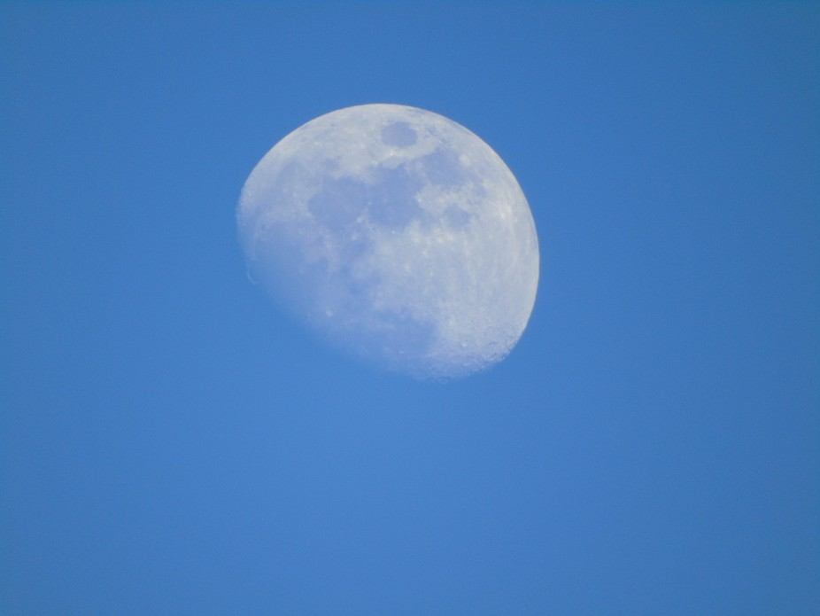 Moon light of the day