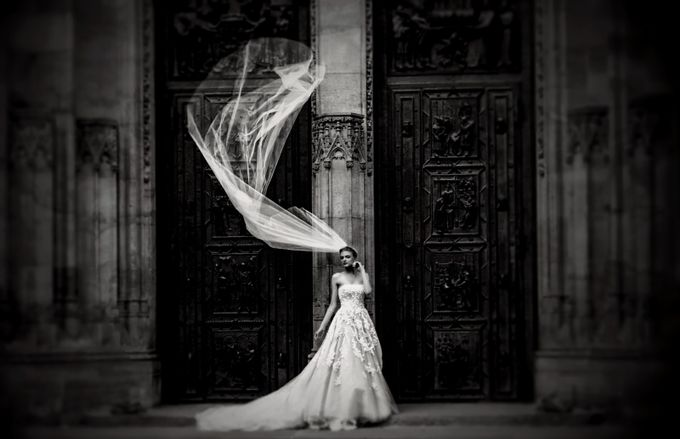 Black and White Bride  by dawnvandoorn - Weddings And Fashion Photo Contest