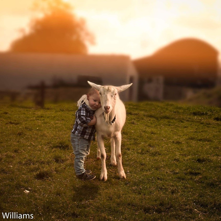 Country Life  by Unaphoto - Kids And Pets Photo Contest