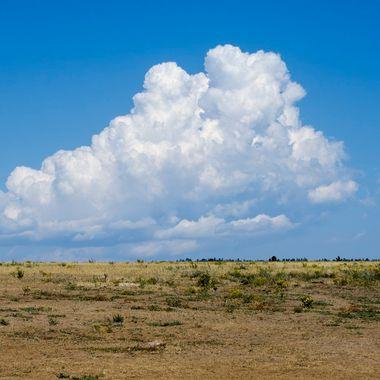 Plain's Clouds