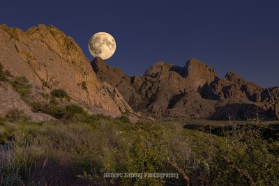 October Golden Hour Hunter Super Moonrise - New Mexico