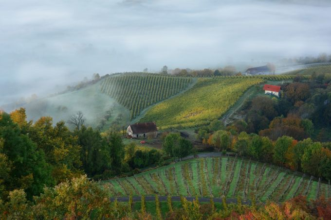 The old house by Suzanathehunter - Mist And Drizzle Photo Contest